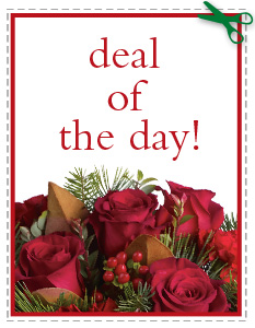 Deal of the Day in Jersey City NJ, A.J. Barrington's Flowers
